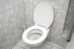 Freud toilet training 101